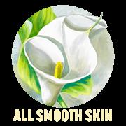 All Smooth Skin Haarentfernung in Bezirk Moedling Bei Wien